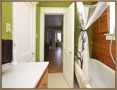 Home Interior Bathroom Painting Photo